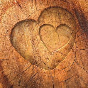 Tree of Life - Baum des Lebens